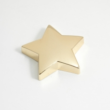 Gold Plated Star Paper Weight.
